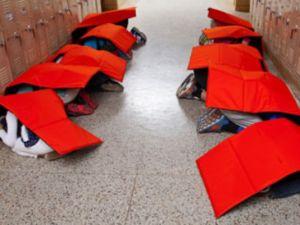 1402402822000-body-guard-blanket